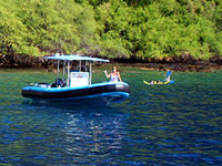 hawaii cruise excursions