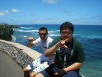 honolulu hawaii tours