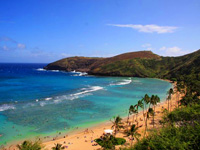 circle island tours hawaii