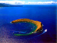 Maui Molokini Snorkeling Excursion